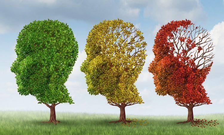 Relatie hoog glycemische voeding en ziekte van Alzheimer