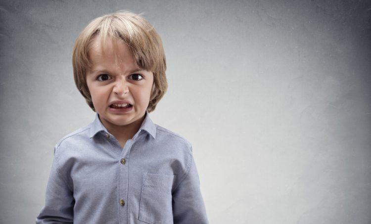 Omega 3-vetzuren kalmeren bij agressief gedrag