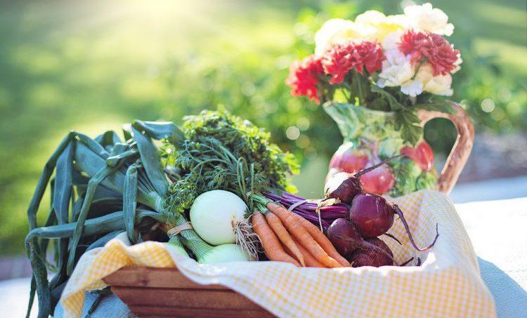 Plantaardige voeding voorkomt hart- en vaatziekten