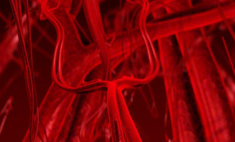 Isoflavonen, lignanen en prostaatkanker