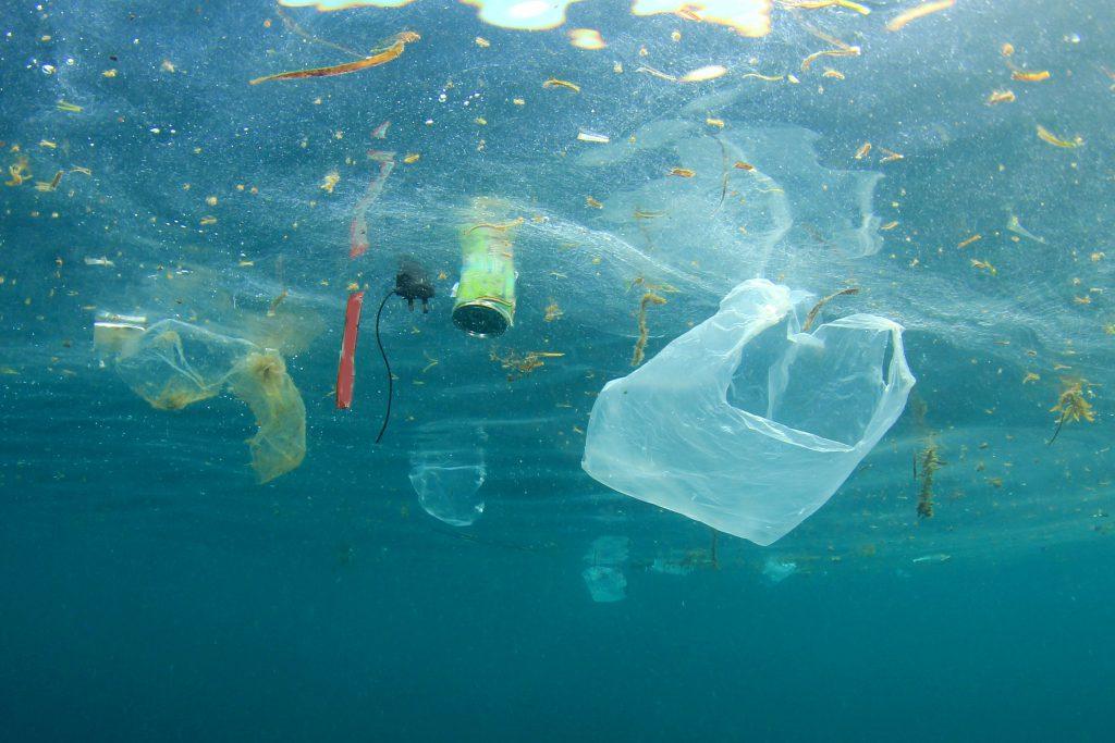 Onderzoek naar de effecten van microplastics op het menselijk lichaam