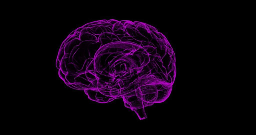 Hormoonverstorende stoffen, hersenontwikkeling en psychiatrische aandoeningen